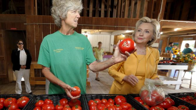 Democratic presidential candidate Hillary Clinton picks out tomatoes with owner Jane Presby (L) during a visit to Dimond Hill Farm in Hopkinton, New Hampshire July 28, 2015.  REUTERS/Brian Snyder
