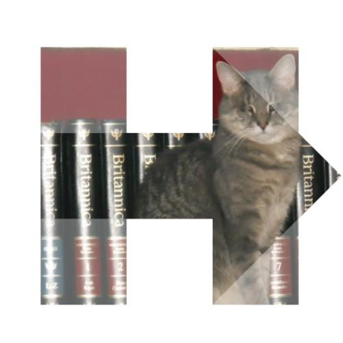 book-cat-H2