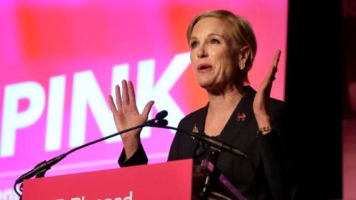 Cecile Richards, Planned Parenthood's president, addresses an audience during an event Sunday, Jan. 10, 2016, in Hooksett, N.H., during which Planned Parenthood endorsed Democratic presidential candidate Hillary Clinton in the presidential race. The endorsement by the group's political arm marks Planned Parenthood's first time wading into a presidential primary. (AP Photo/Steven Senne)